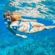 Woman Snorkeling in Tropical Ocean - Stock Photo
