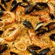 Stock Photo: Large sepaella