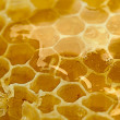 Delicious honeycomb close — 图库照片