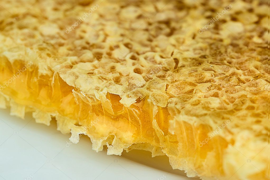 Tasty and sweet honey comb close  Foto Stock #11096631