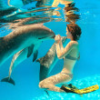 Stock Photo: Dolphin and girl