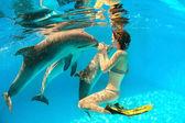 Delfín y chica — Foto de Stock
