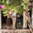 Happy senior couple dancing latin american dance for fun - Stock Photo