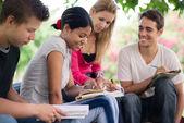 Högskolestudenter göra hemuppgifter i park — Stockfoto