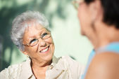 Old friends, two happy senior women talking in park — Foto de Stock
