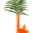 Vase with fern and orange lily — Stock Photo