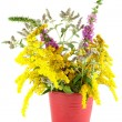 Bouquet of wild flowers in a red bucket — Stock Photo