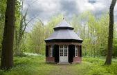 Viejo te casa en el bosque — Foto de Stock