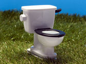 Outside toilet in the grass — Stock Photo