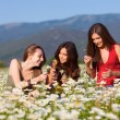 Girls on the flower meadow — Stock Photo