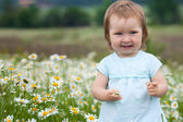 Little girl on the camomile meadow — Stock Photo