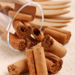 Cinnamon sticks in a glass beaker - Stock Photo
