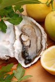 Oyster, lemon and parsley — Stock Photo