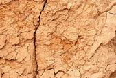 Cracked clay ground into the dry season — Stock Photo