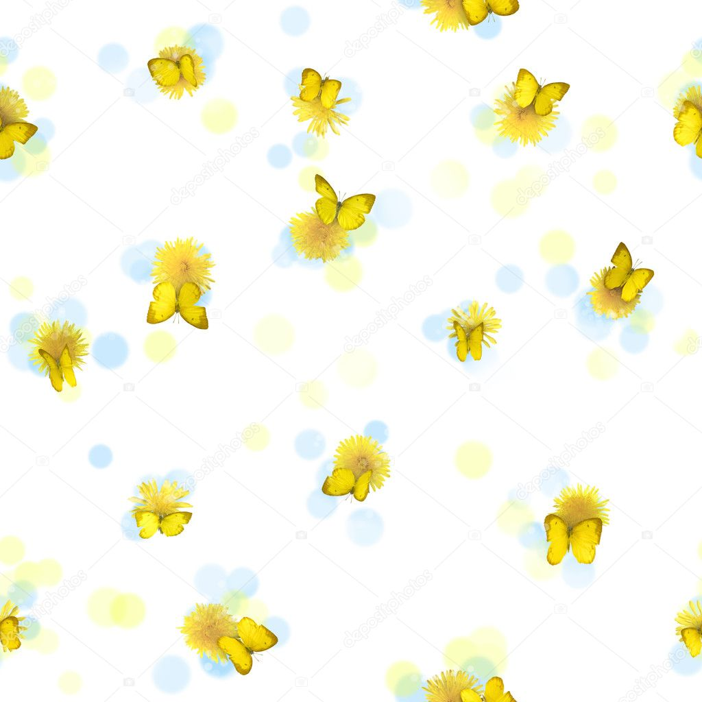 Repeatable yellow butterflies, from many perspectives, and dandelions, studio photographed with some blurred circles, isolated on white — Stock Photo #11056290