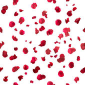 Sömlös rosenblad — Stockfoto
