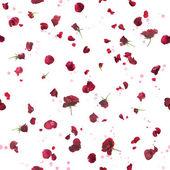 Seamless dark roses and bokeh — Stock Photo