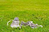 Skor på gräsmattan — Stockfoto