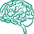 cerebro humano — Vector de stock