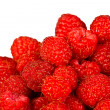 Ripe  red wild raspberries - Stock fotografie