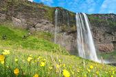 Знаменитый Водопад Селйяландсфосс Исландии — Стоковое фото
