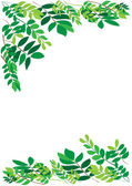 Foliage border — Stock Vector