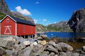 норвежский фьорд — Стоковое фото