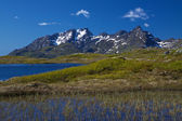 Lofoten mountains — Stock Photo
