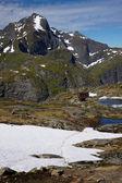 высочайшие вершины на лофотенских островах — Стоковое фото