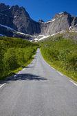 Strada norvegese — Foto Stock
