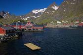 Traditional norwegian village — Stock Photo