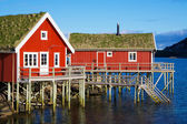 Rorbu huts in Reine — Stock Photo