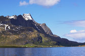 Lofoten pittoresque — Photo
