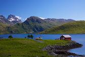 Scenic Lofoten — Stock Photo