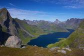 Norská krajinkaκαραβίδες με το ένα χέρι — Stock fotografie