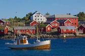 рыбалка на лофотенских островах — Стоковое фото