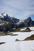 Peaks on Lofoten islands — Stock Photo