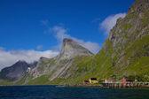Fjord aan lofoten eilanden — Stockfoto