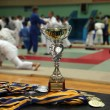 Cup and medals - Stock fotografie