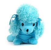 Dog toy — Stockfoto