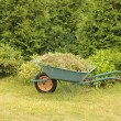 Stock Photo: Wheelbarrow