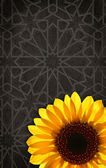 Colourful sunflower on the abstract background — Stock Photo
