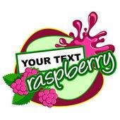 Raspberry. Fruit label. — Stock Vector