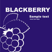 Blackberry label design. — Stock Vector