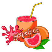 Grapefruit juice pouring. — Stock Vector