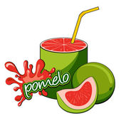Pomelo fruit juice pouring. — Stock Vector