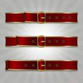 Belts with buckle — Stock Vector