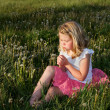 Girl blowing dandelion — Stock Photo