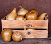 Decorative gourds in a crate — Stock Photo