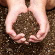 Close-up of child holding dirt — Stock Photo